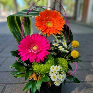 Feature Flower Design
